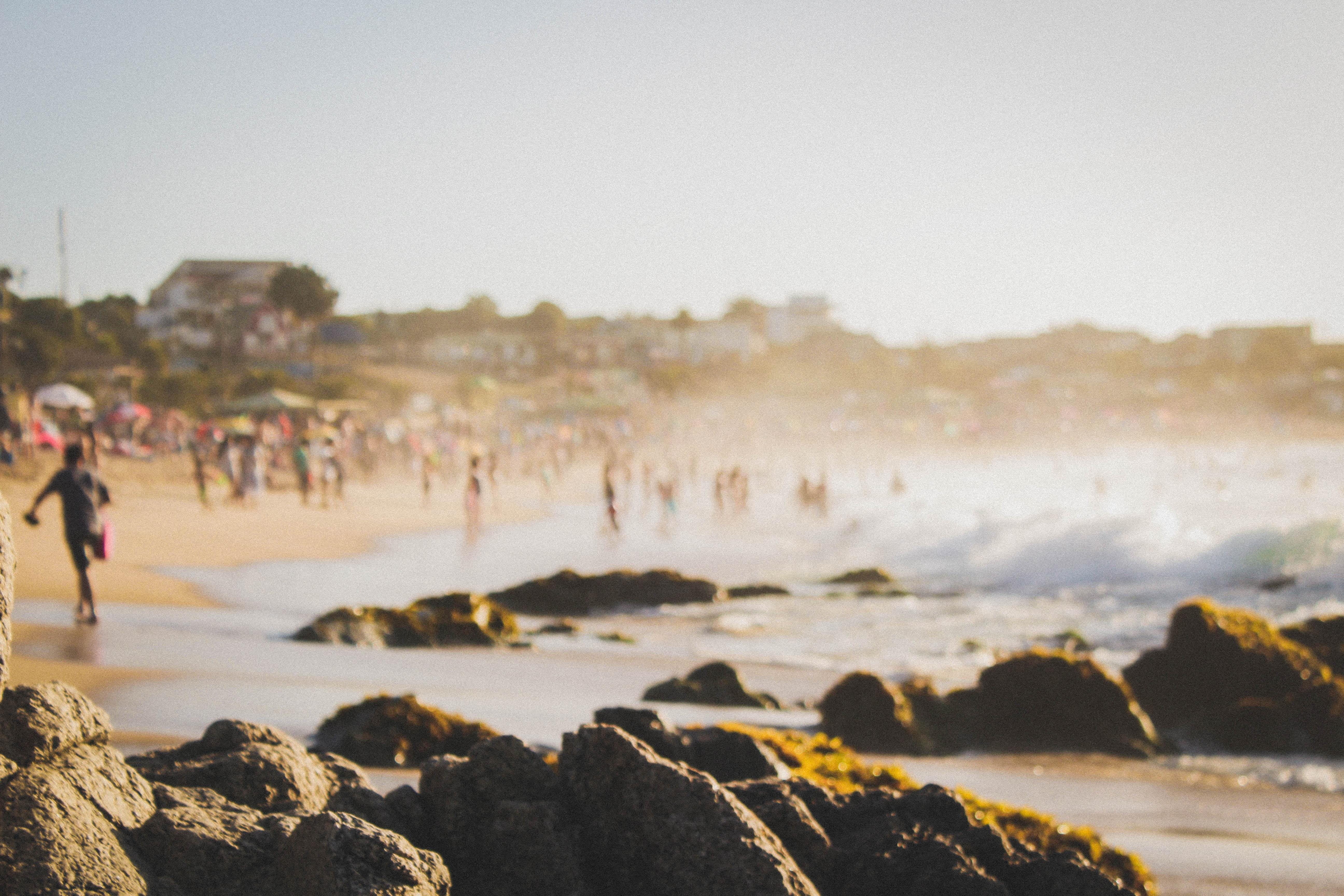 people near seashore