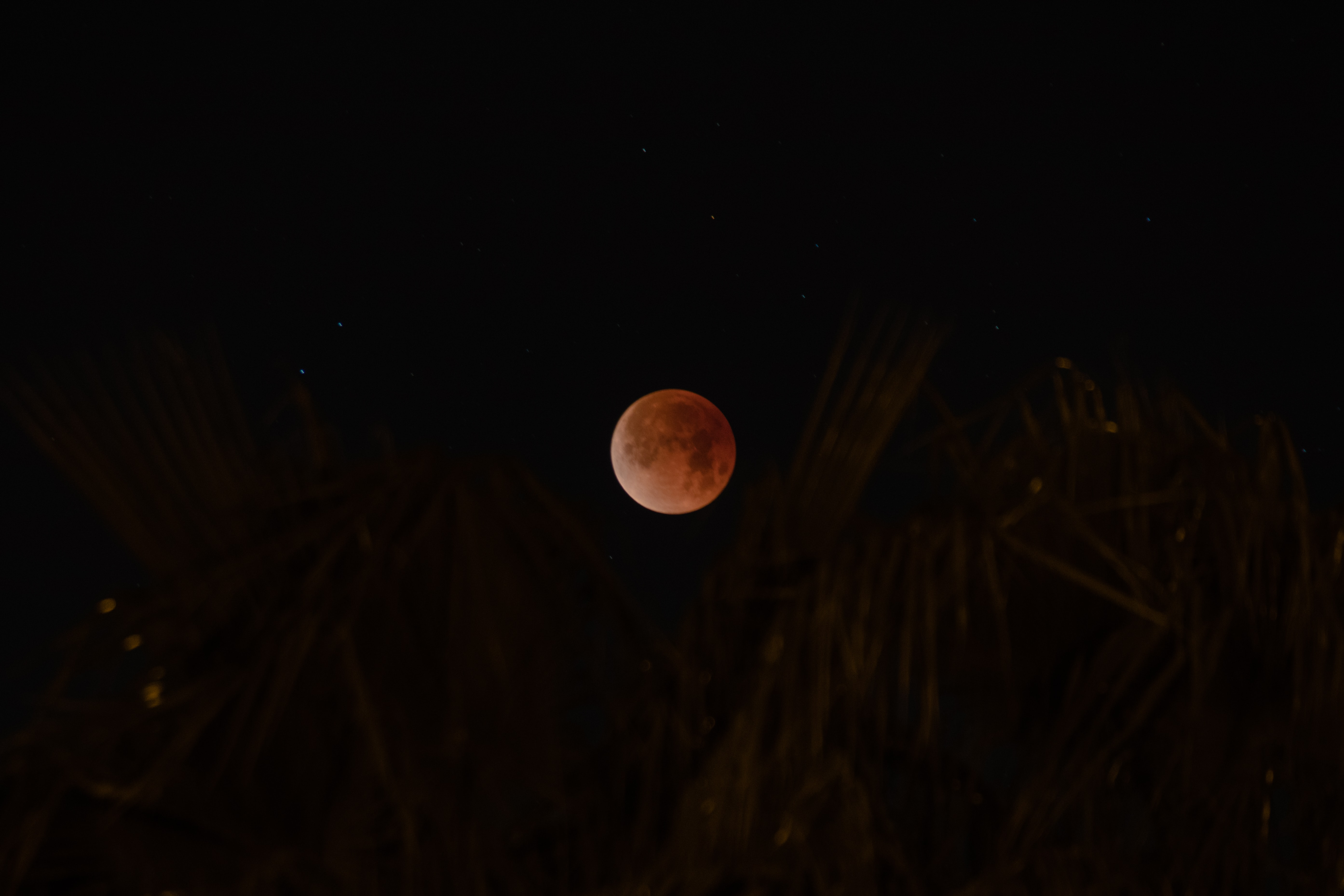 shallow focus of moon