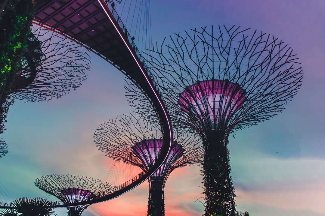 Sunset at Gardens by the Bay – Singapore
