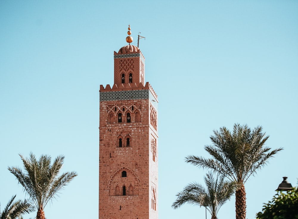 brown and gray bricked wall tower beside palm trees