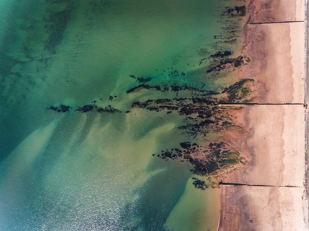 aerial photography of green sea during daytime