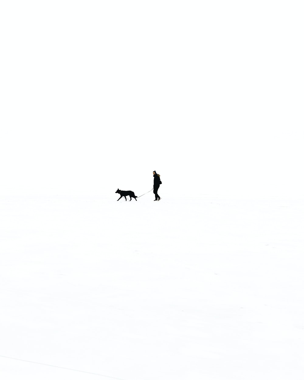 person walking with dog against black background