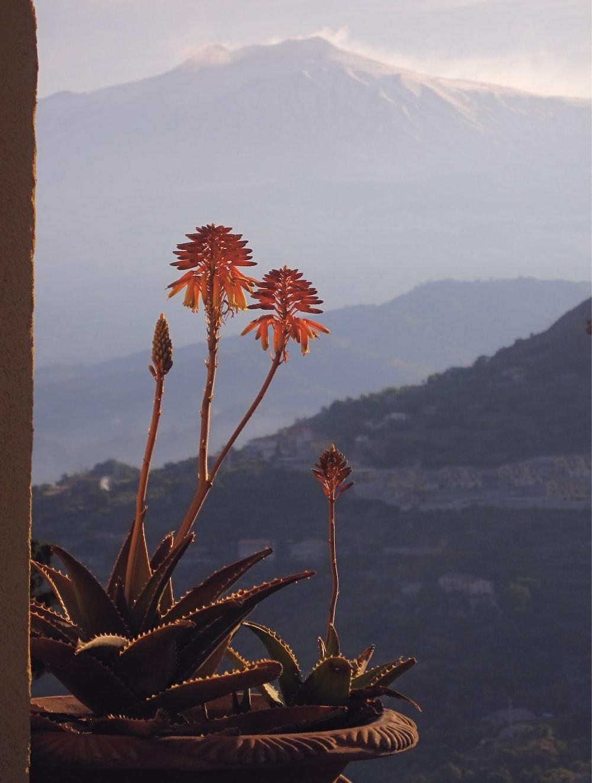 mountain view scenery