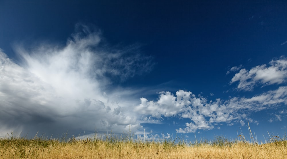 worms eye view photography of cloudy sky
