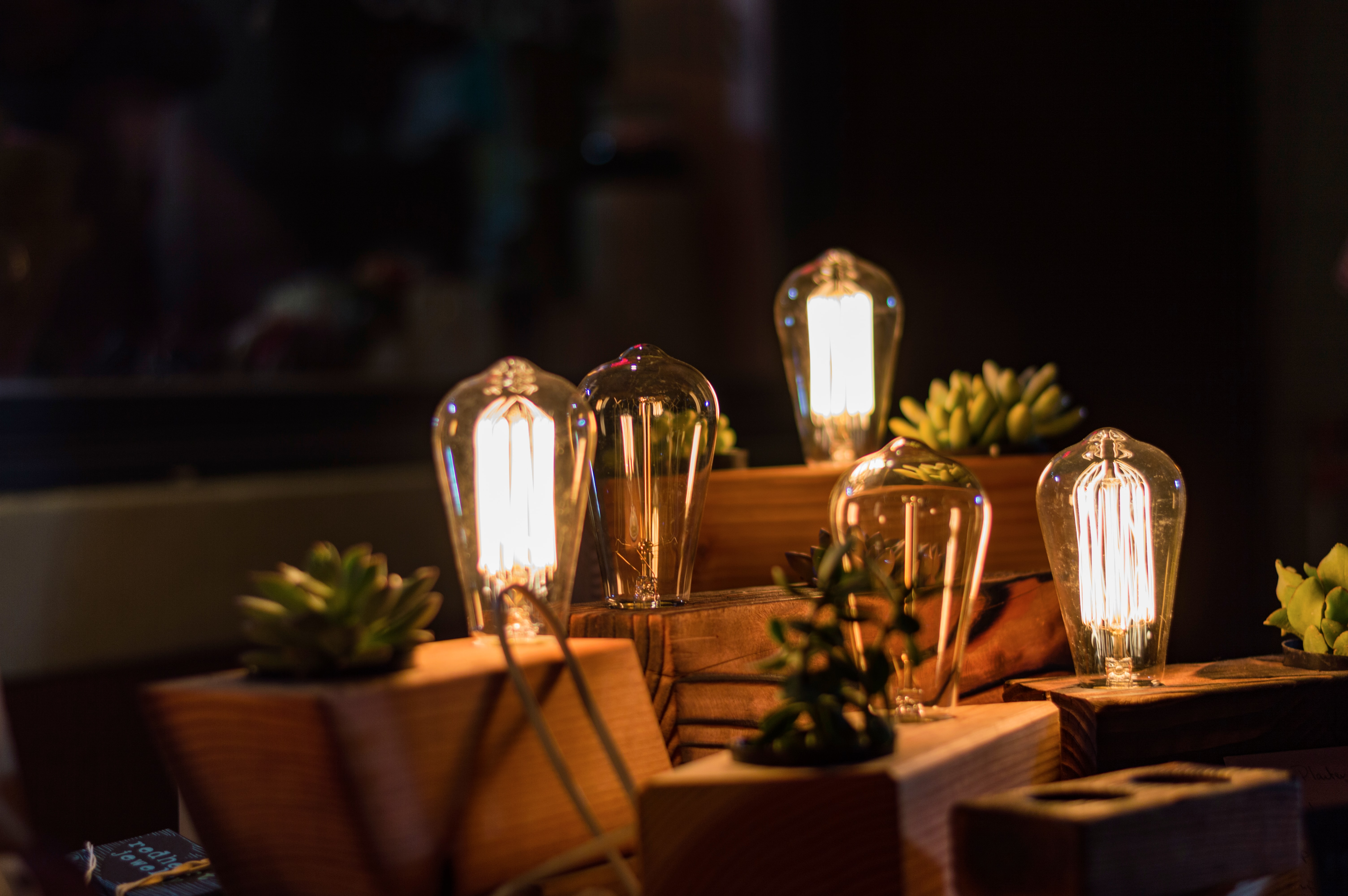 closeup photo of three lighted table lamps with plants