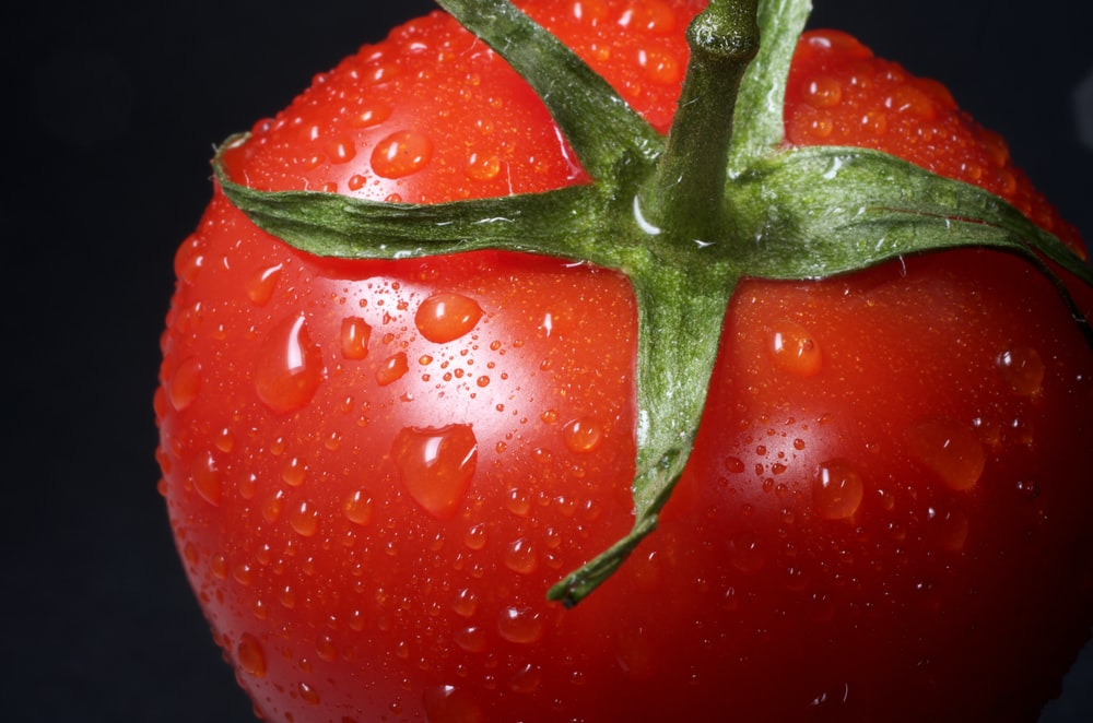 closeup photo of red tomato against black background