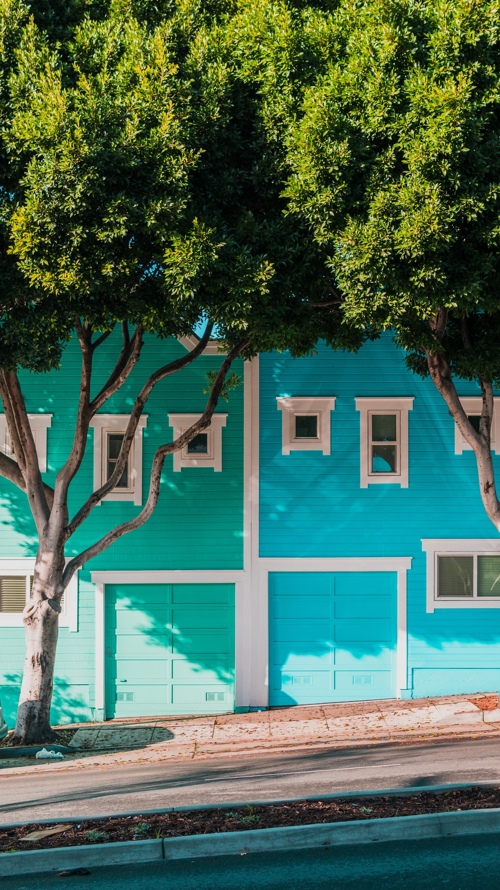 green and blue houses beside trees on sidewalk