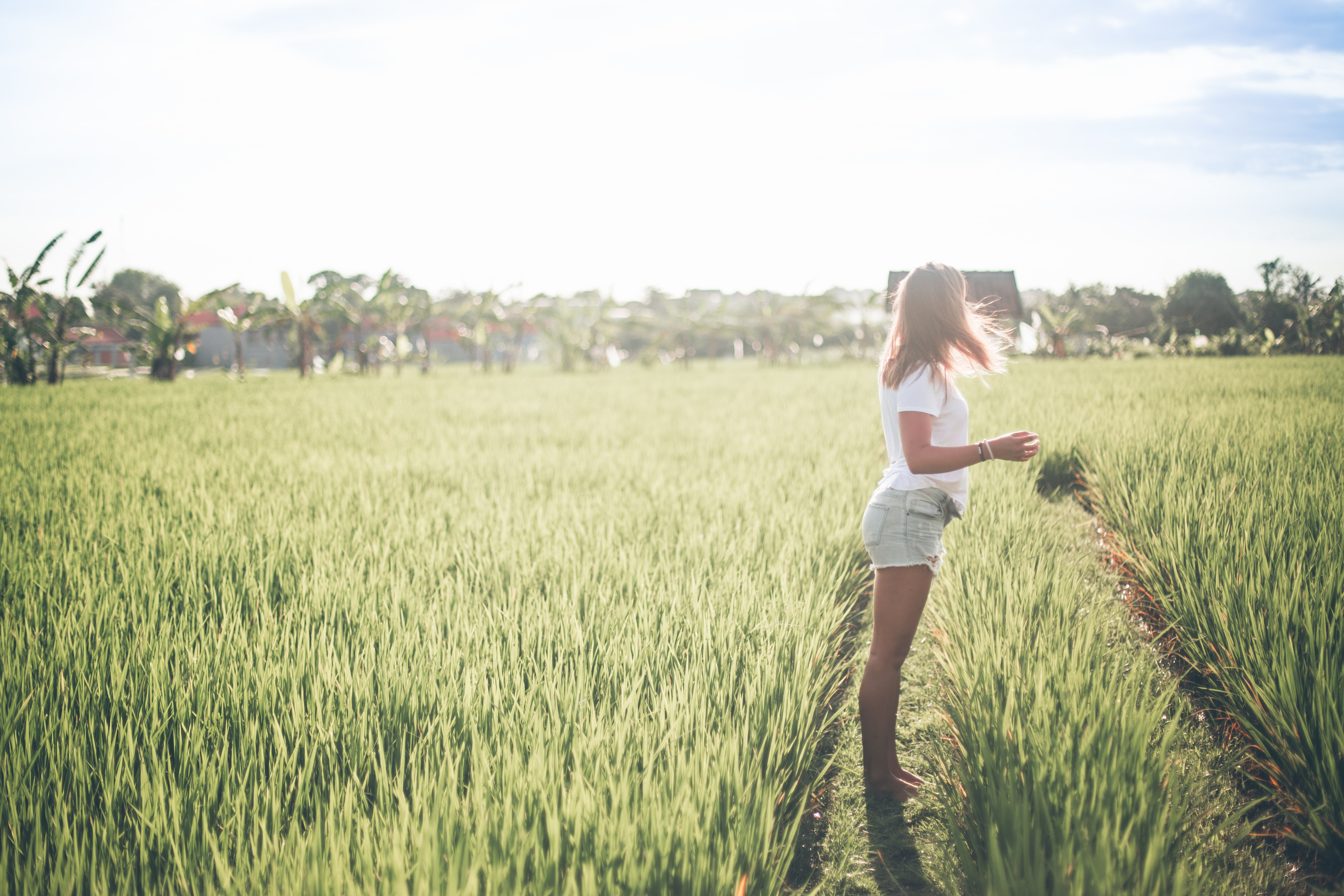 woman stand on green rice fields