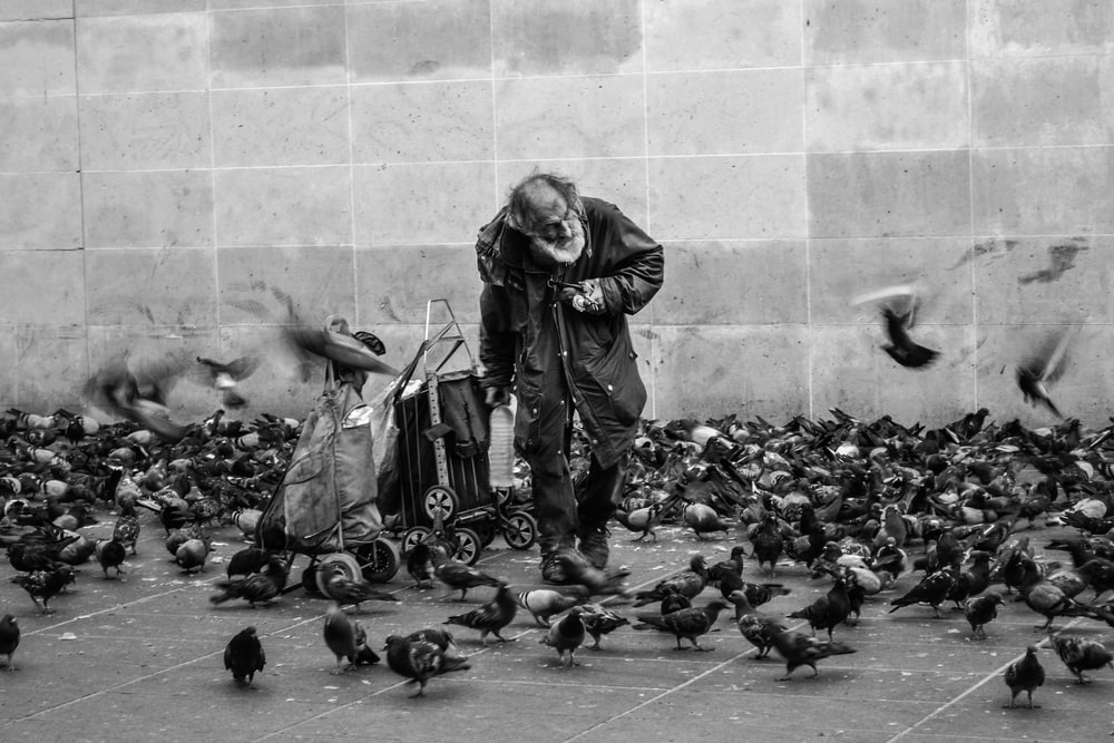 grayscale photography of man surrounded by flock of pigeons standing on street