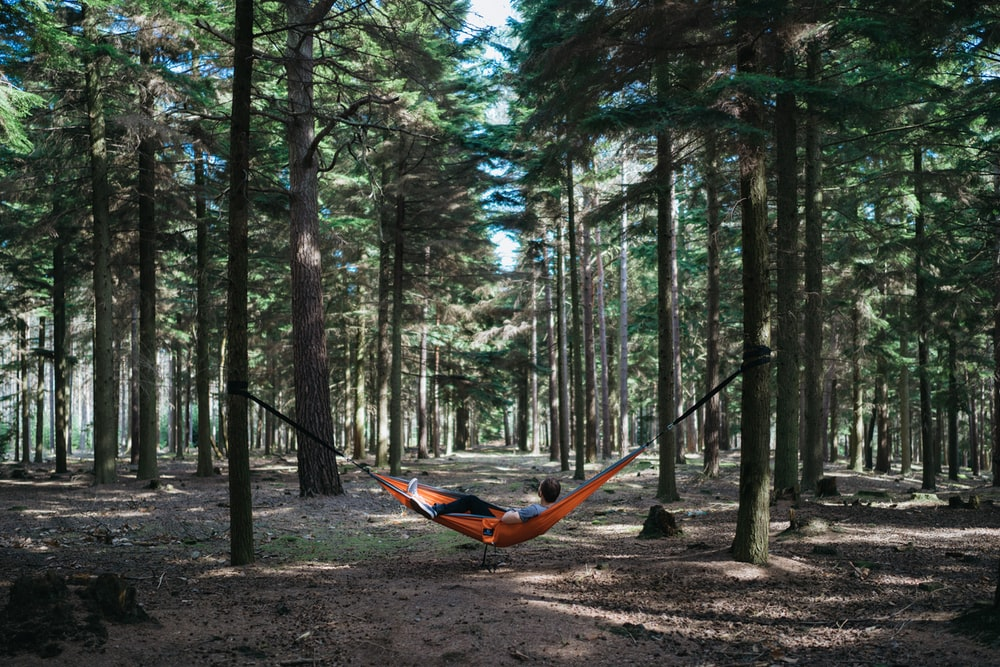 person on hammock outdoors