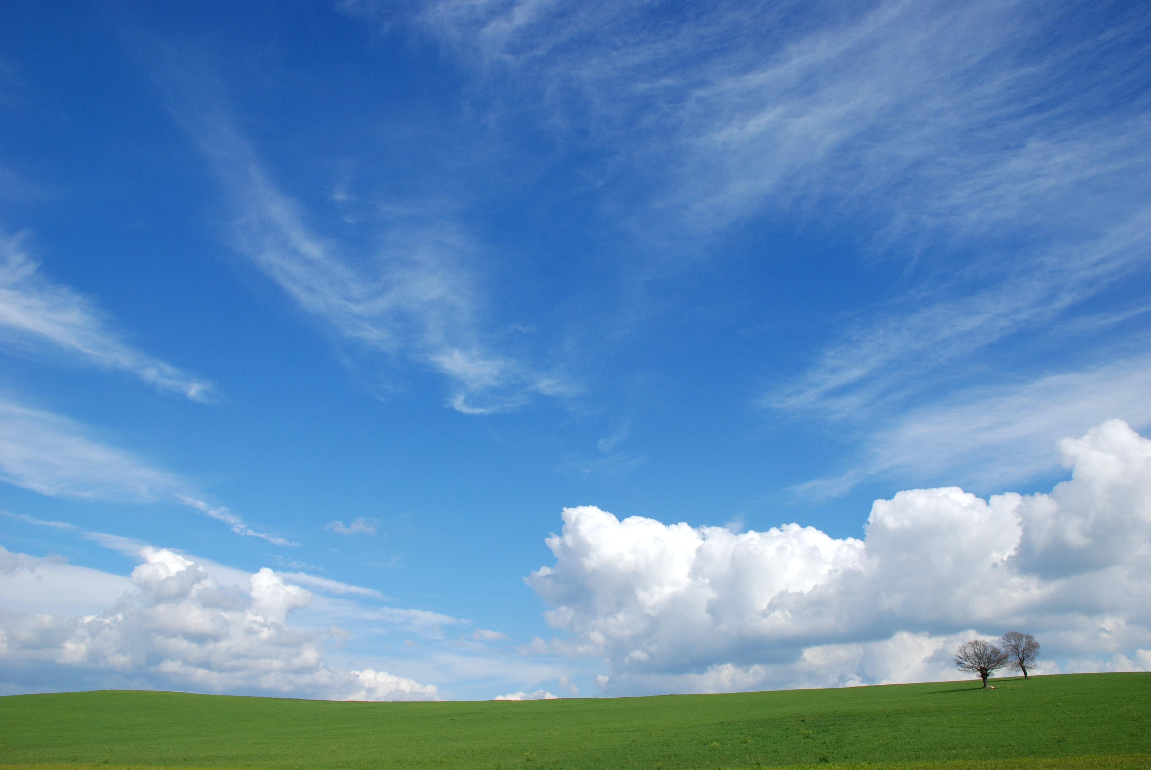 landscape photography of green land under bluesky
