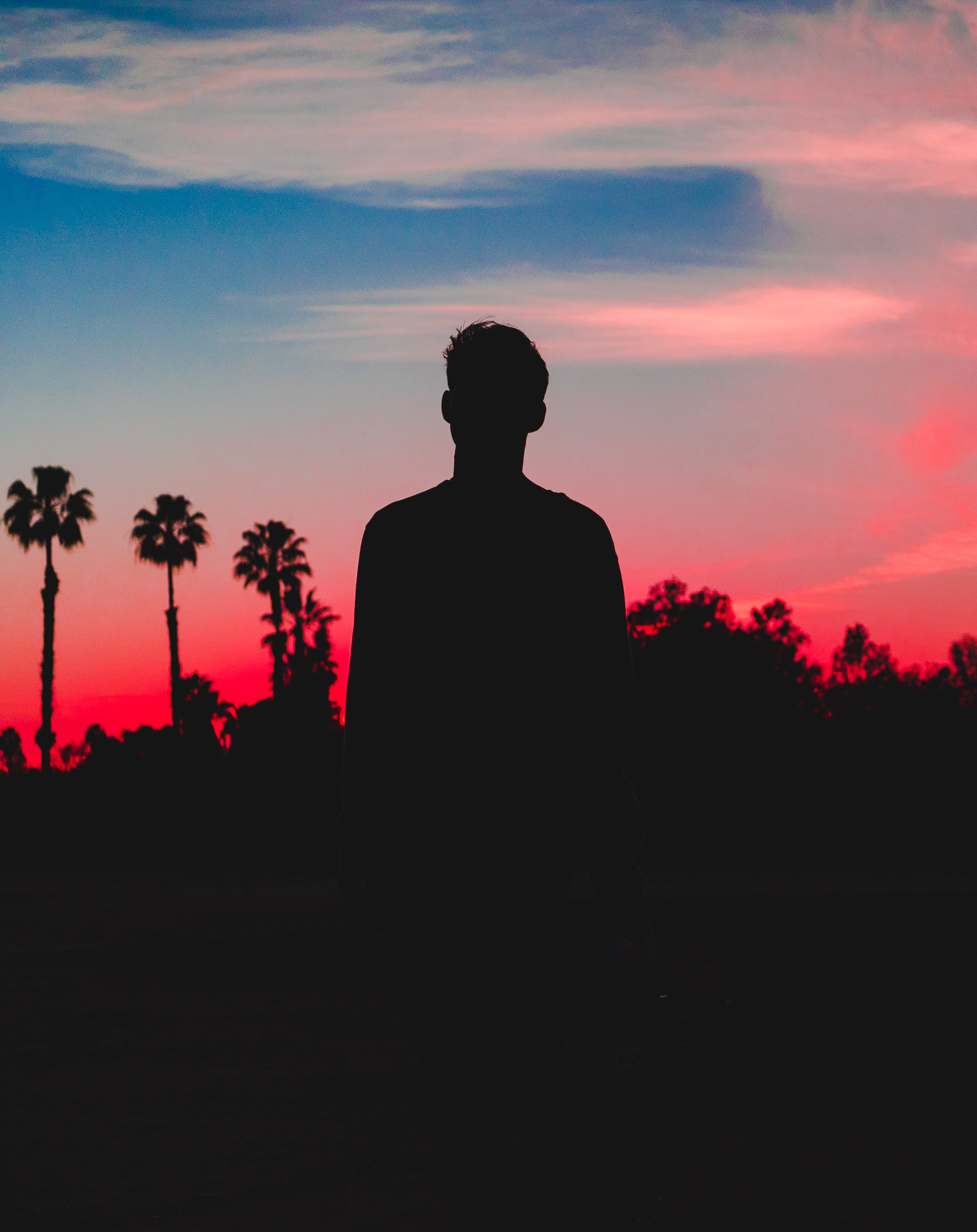 silhouette photo of person behind coconut trees photo