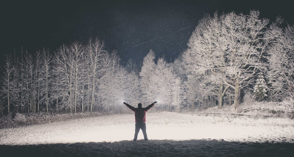 man standing near trees during nighttime