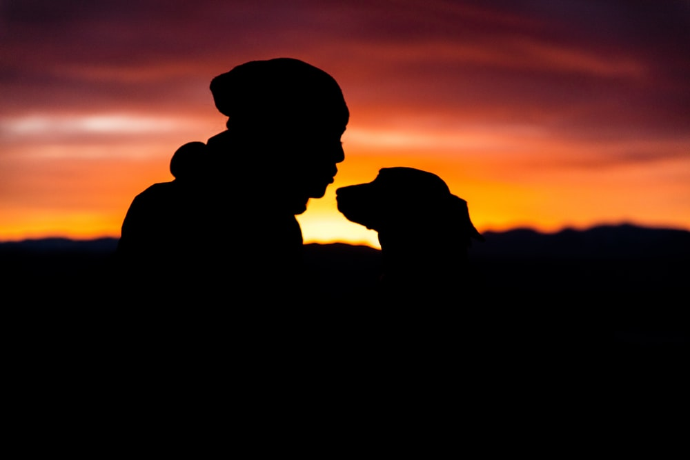 silhouette of person in front of dog during sunset