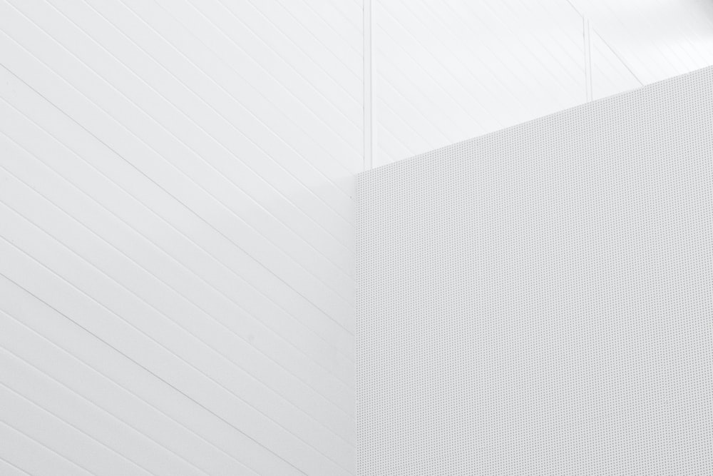 900 White Background Images Download Hd Backgrounds On Unsplash