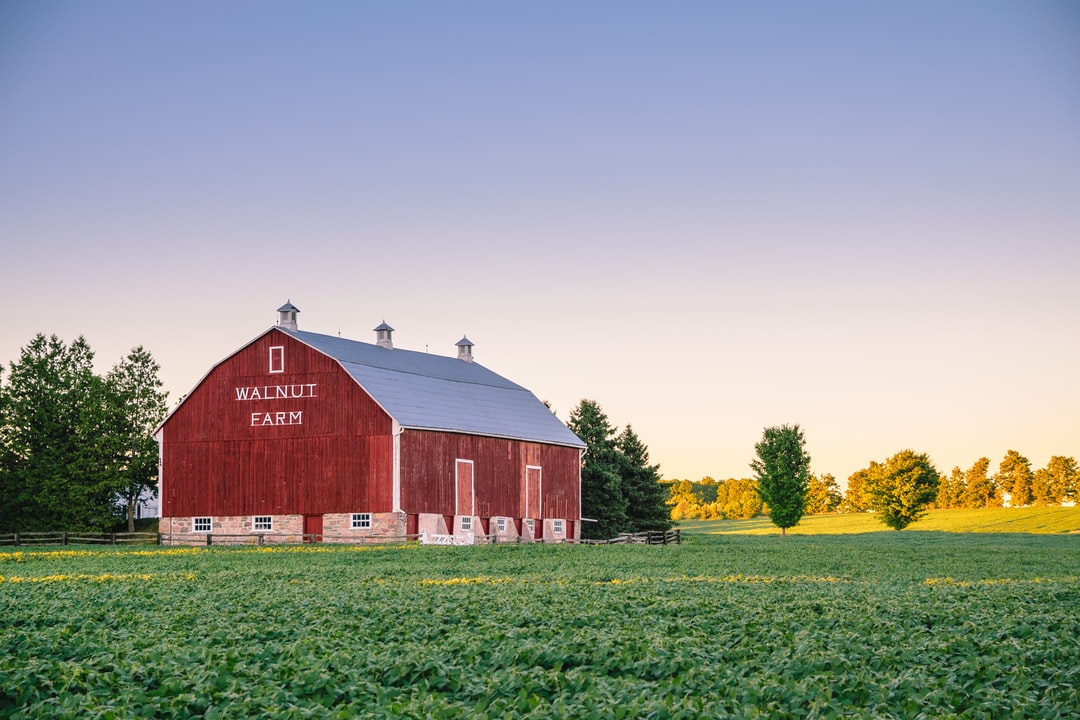During my vacation in Canada I stayed a couple of days in Sharon near Newmarket. On the first day I saw this barn and I absolutely wanted to take a picture of it. So one evening I took my camera and walked to this barn.