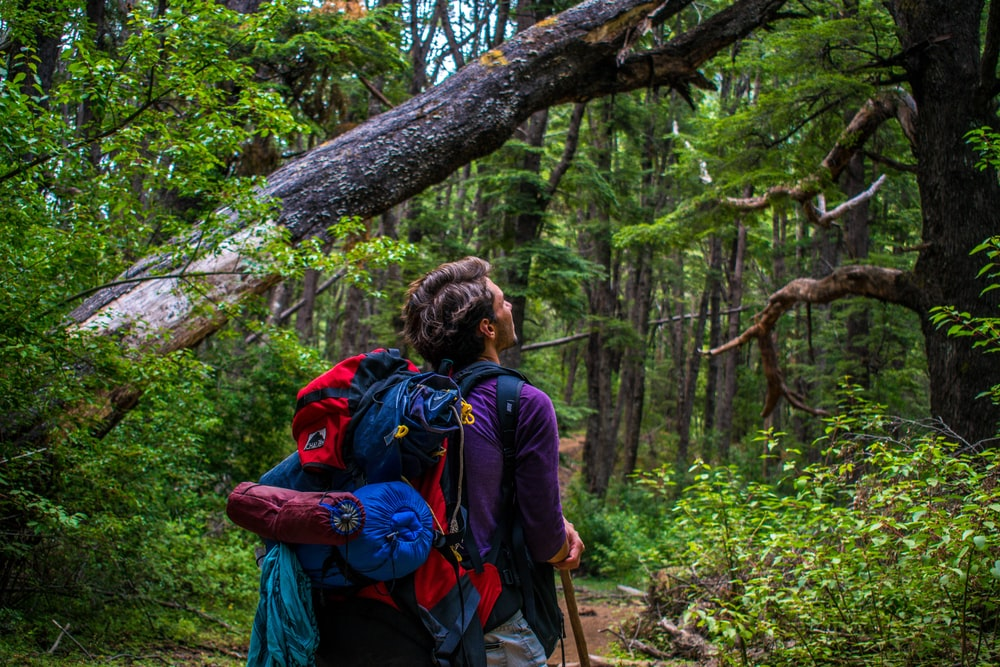 man carrying hiking backpack surrounded with trees