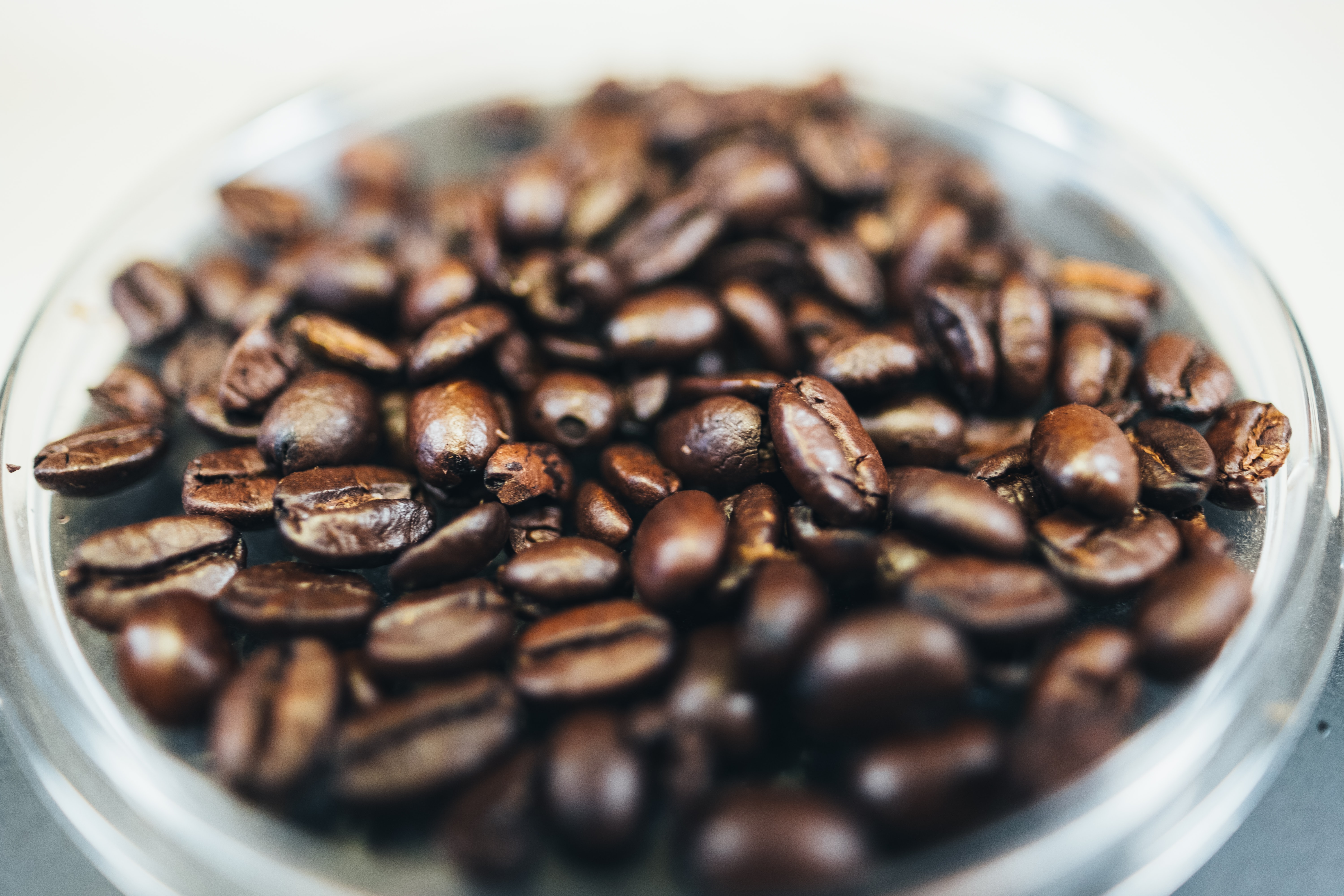 close-up photography of brown coffee beans