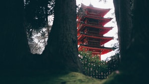 red and brown temple structure at daytime