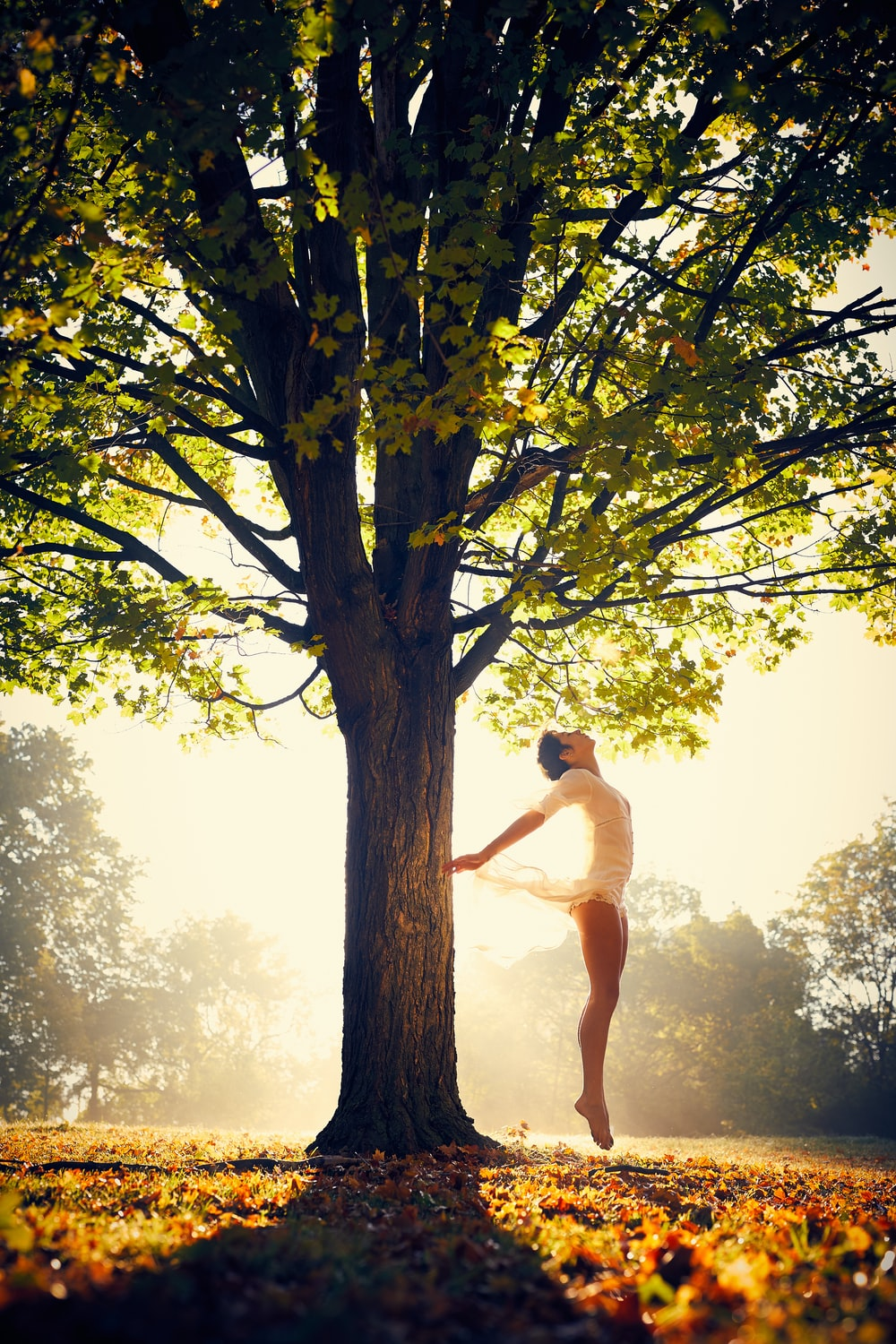 woman dancing under green tree during daytime