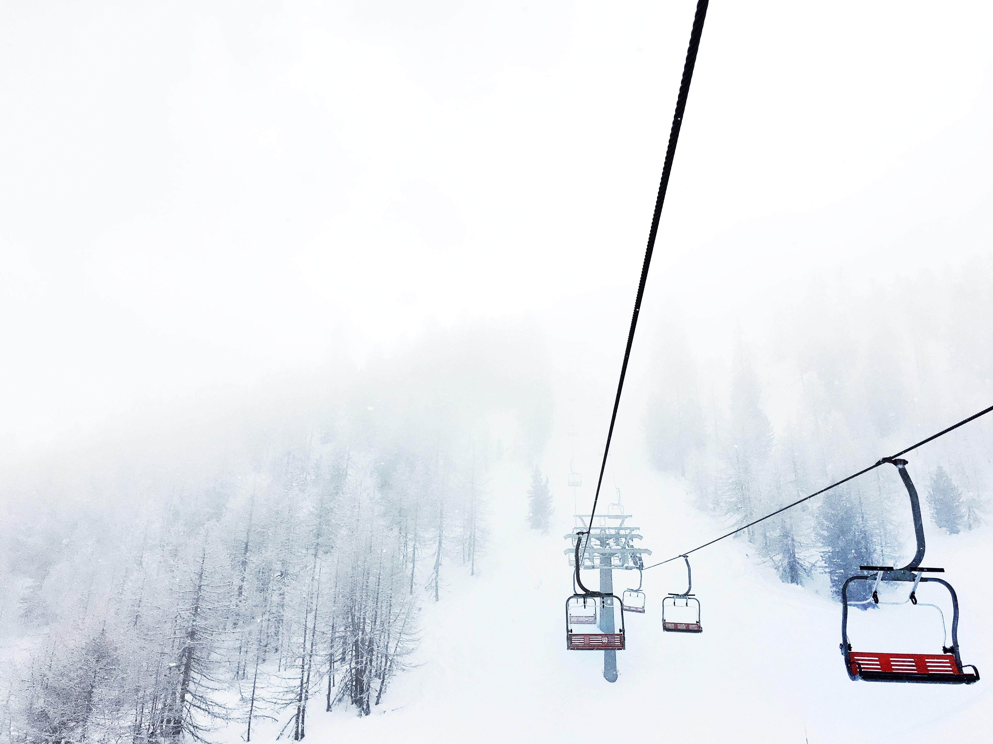 black and red ski lift near trees