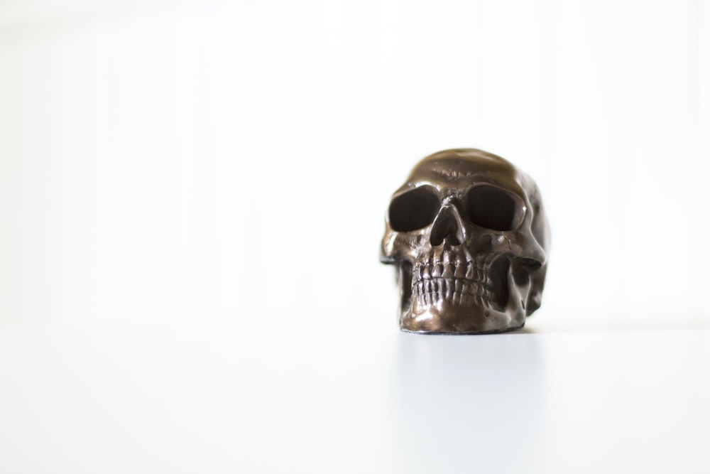 gray skull decor