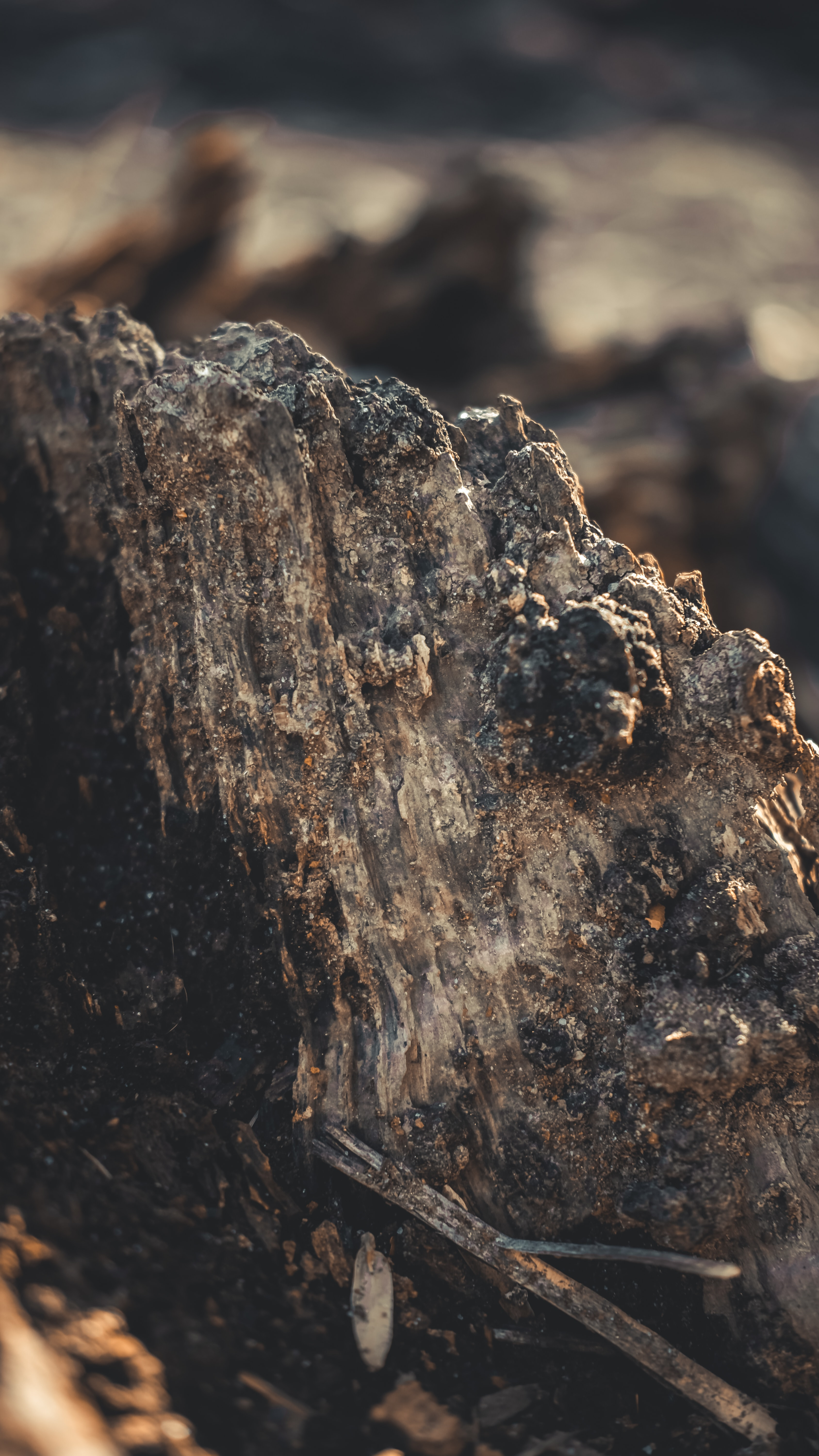 gray mineral rock close up photography