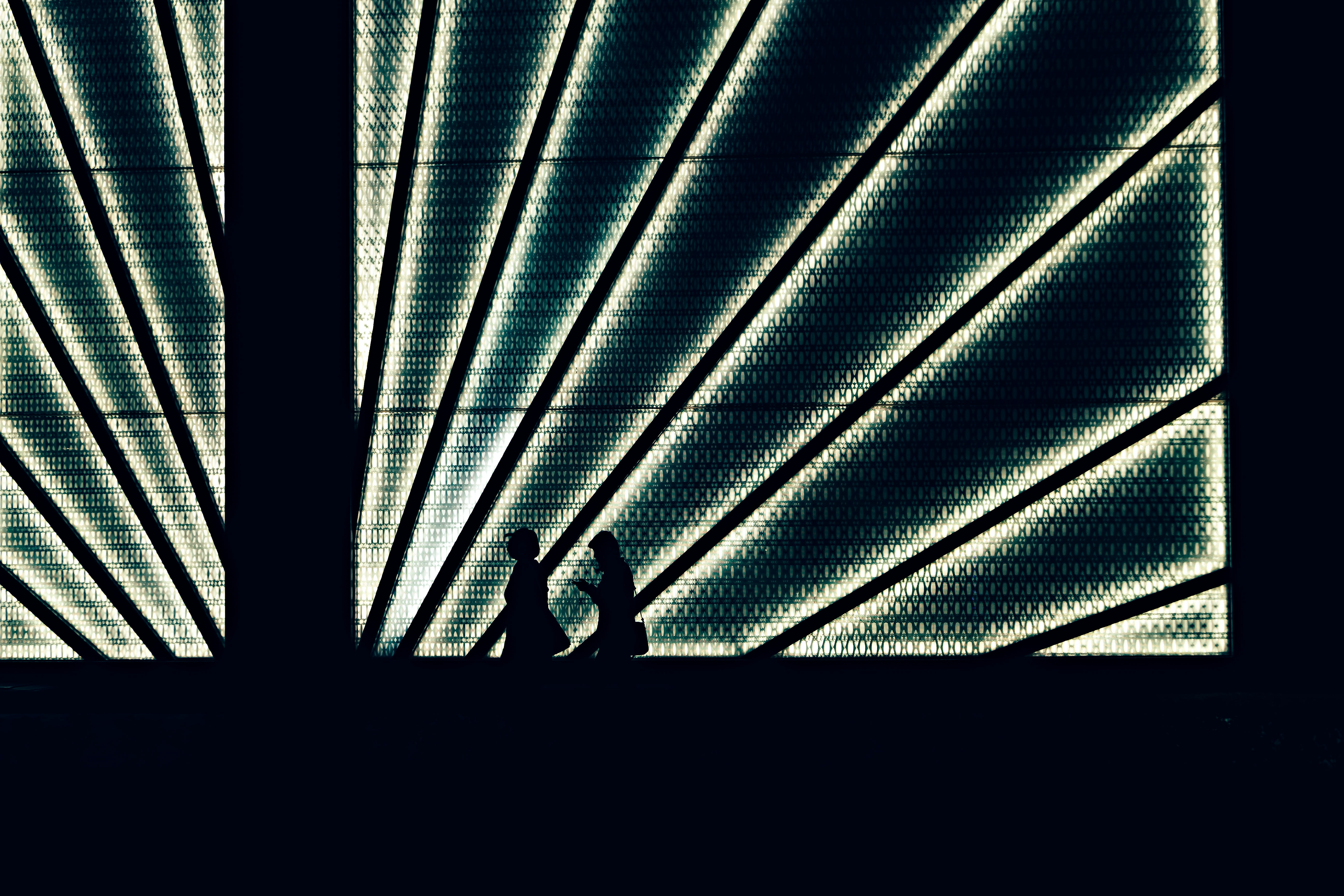 silhouette of two person walking