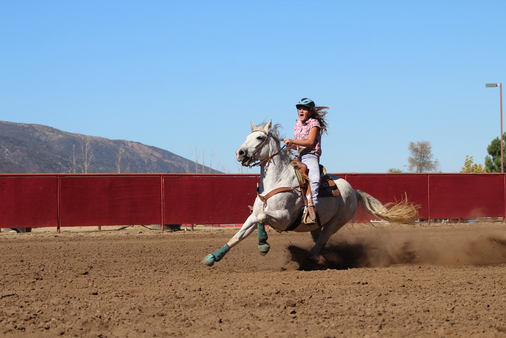 woman riding horse during daytime