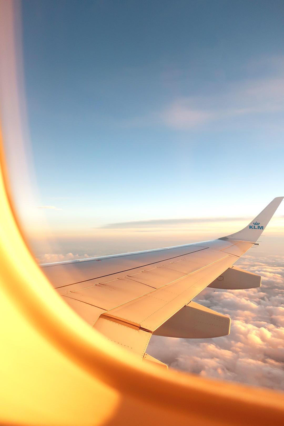 Dreaming Sky High
