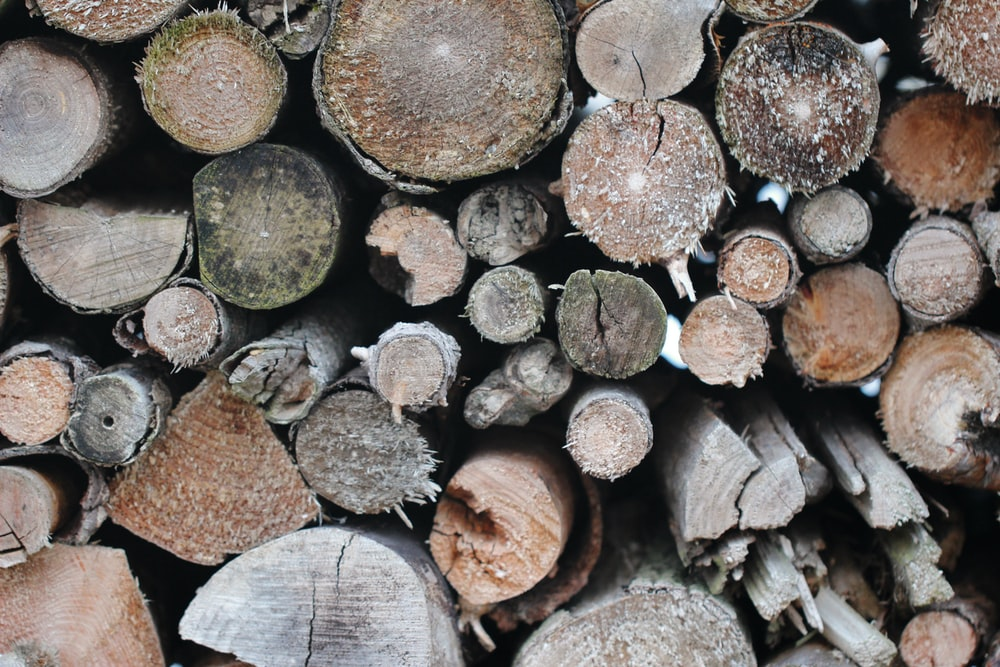 closeup photography of firewood stack