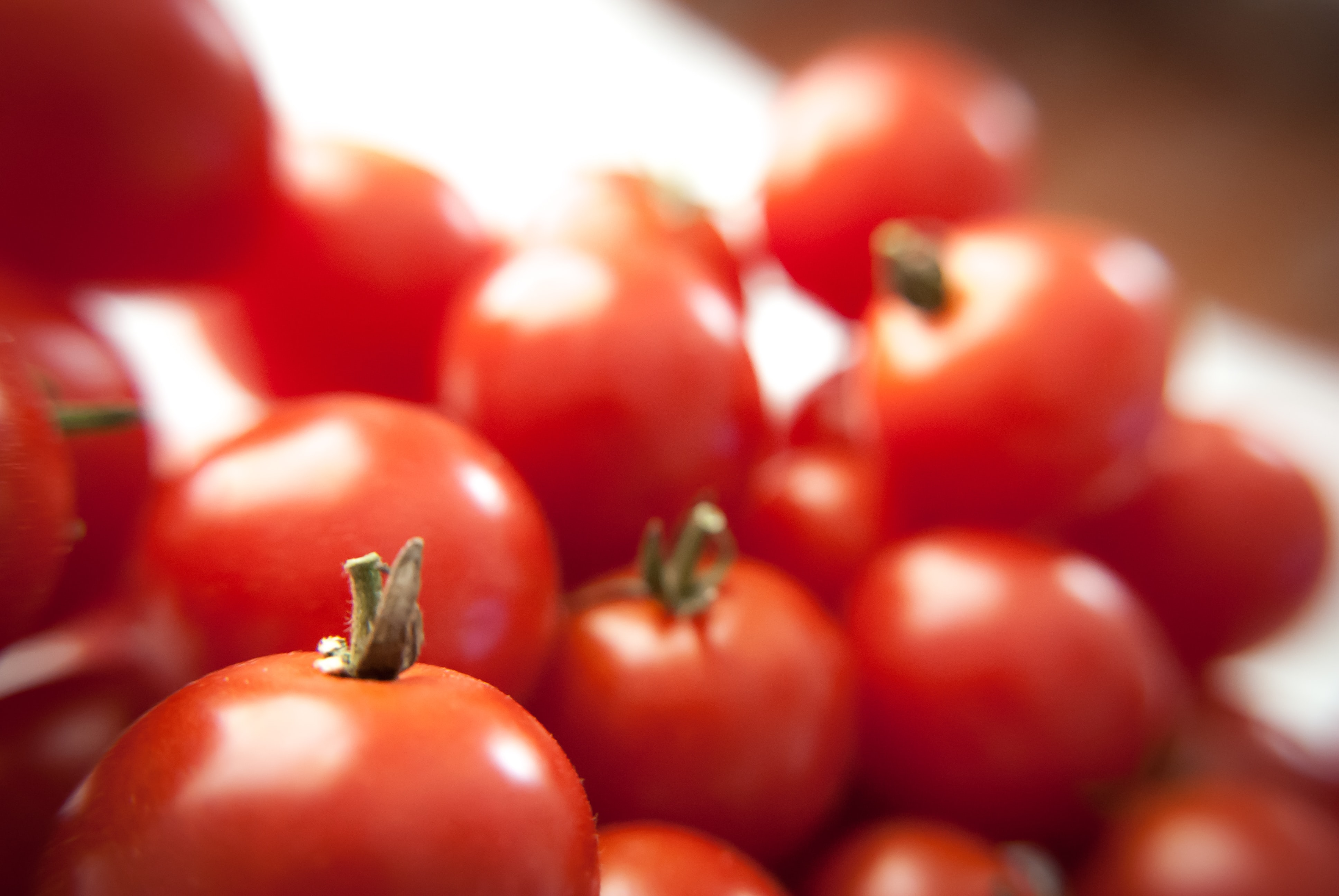 shallow focus photography of tomatoes