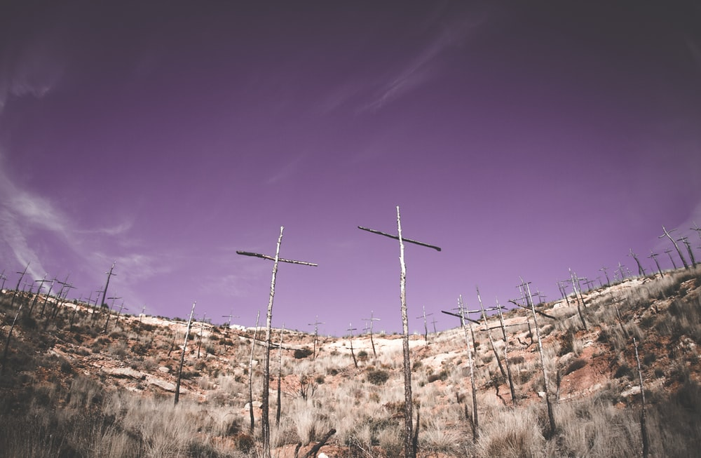 low-angle photography gray wooden cross on hilltop
