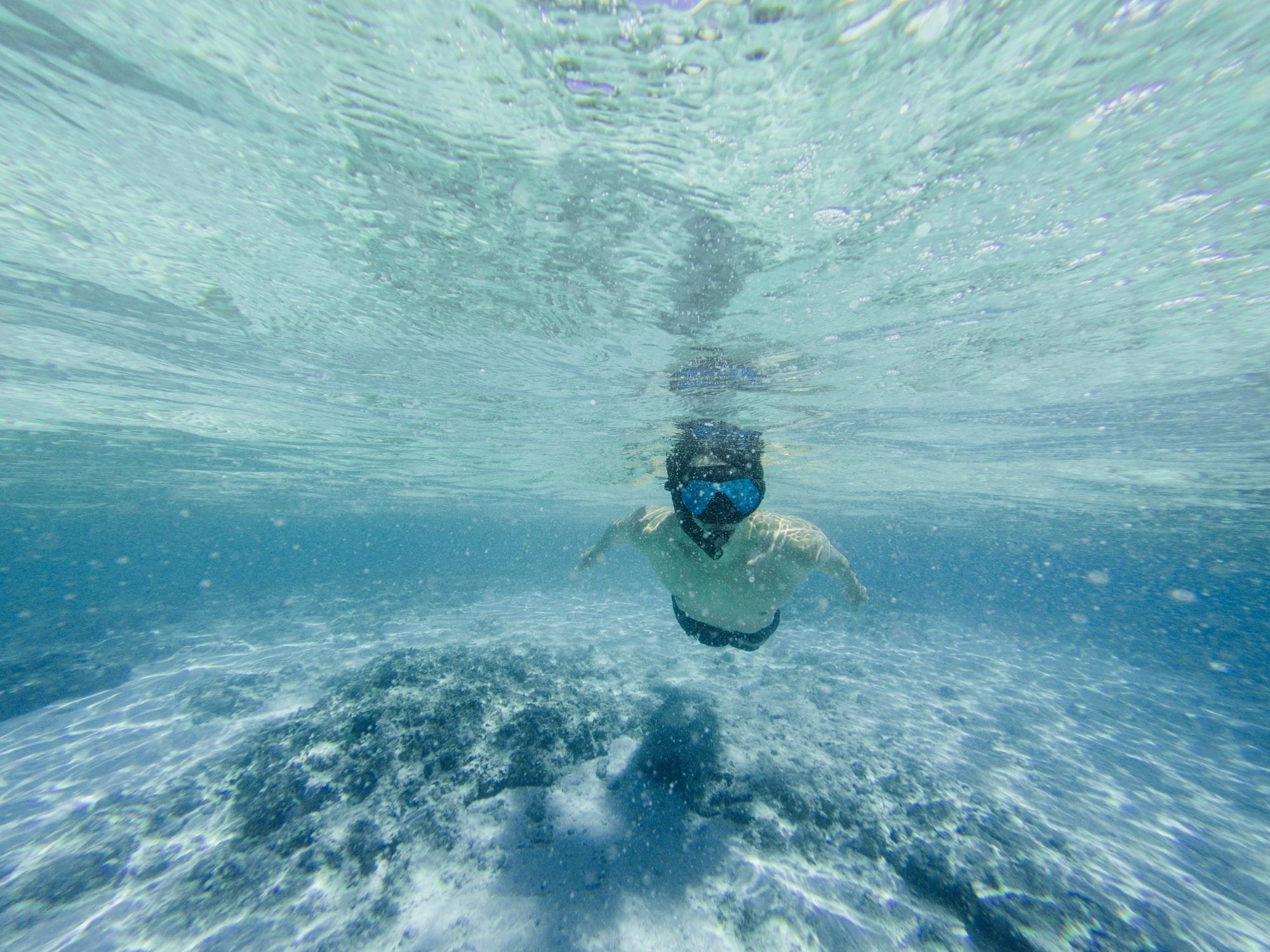 Kde se vzal potápěcí reflex