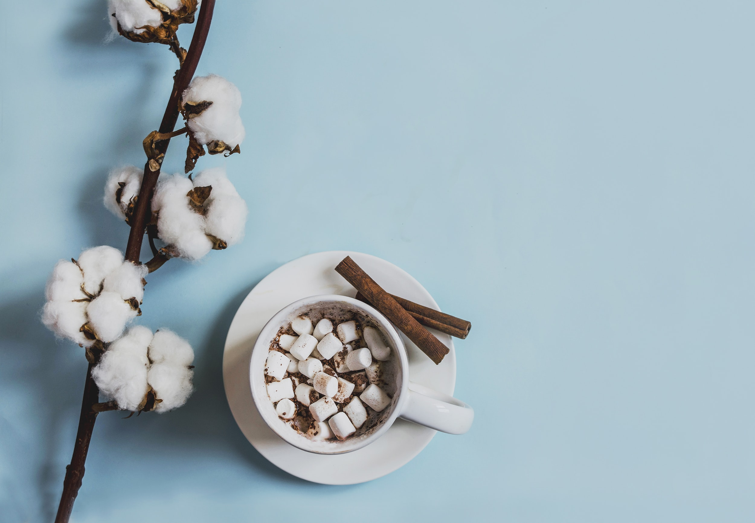 white ceramic mug filled with marshmallows beside cinnamon sticks placed on round white ceramic saucer near white cuttons
