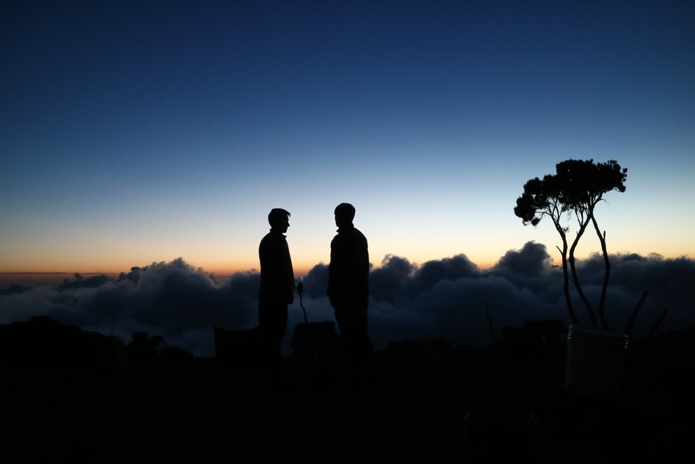 silhouette photography of two men standing near tree