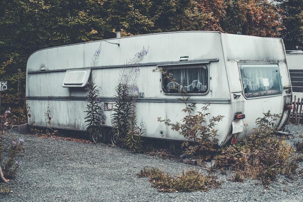 white RV trailer behind green leafed tree
