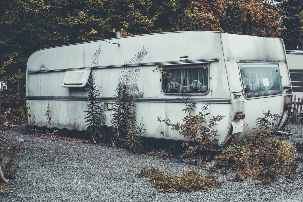 white RV trailer behind green leafed tree