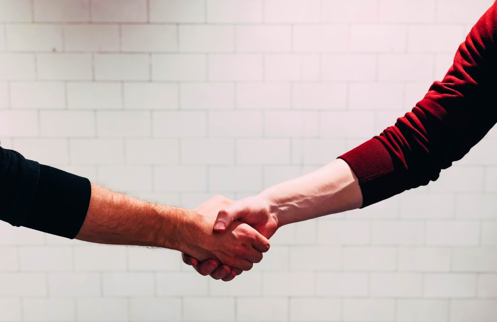 two person shaking hands near white painted wall