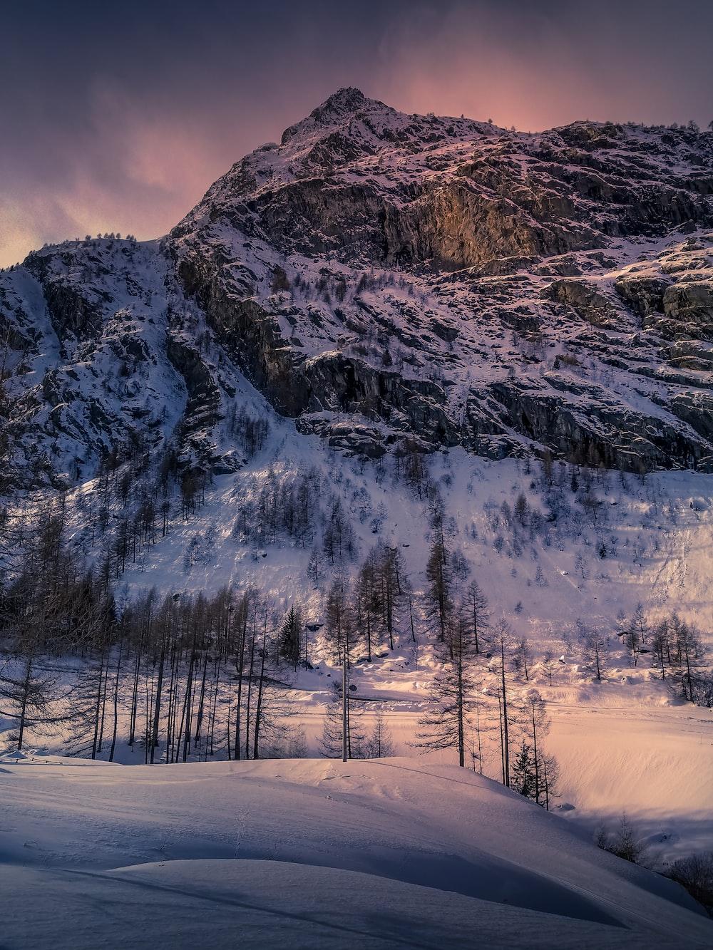 white mountain near trees