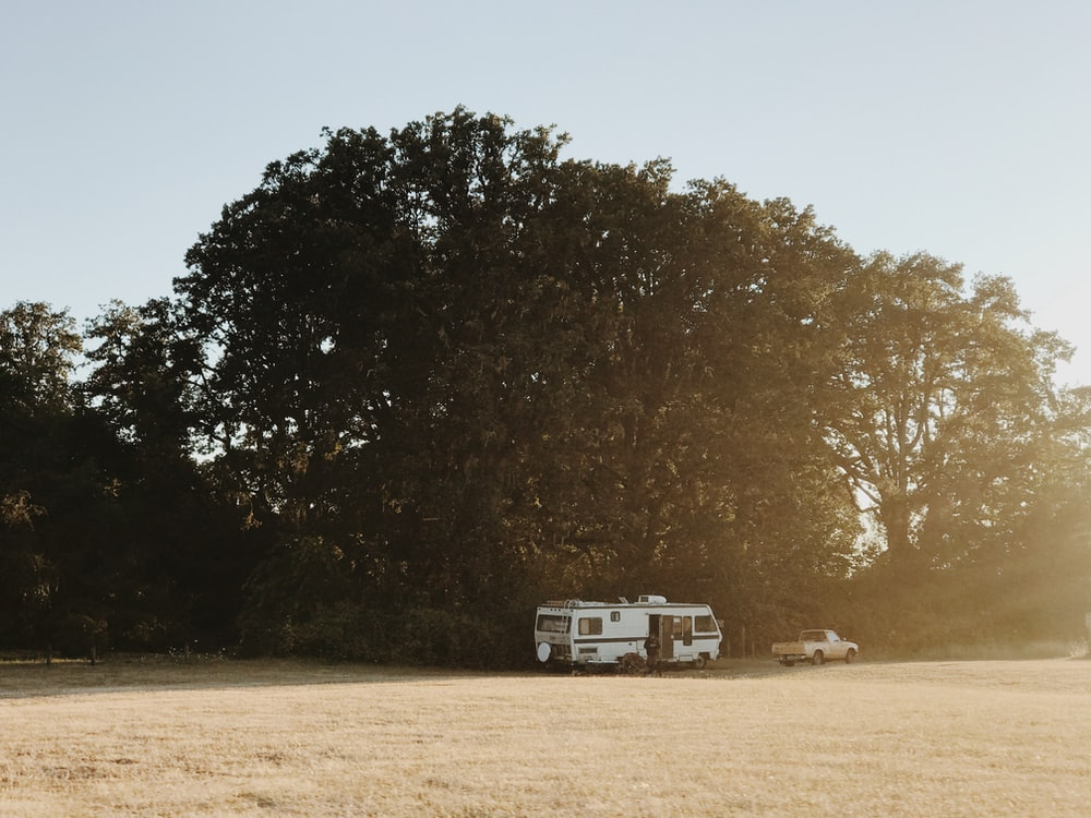 white RV trailer under green tree