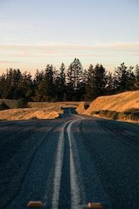 gray concrete road near trees
