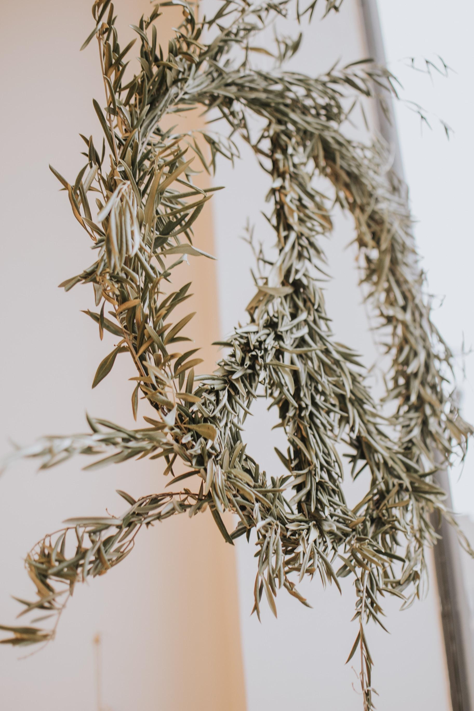 green leaf plant wreath