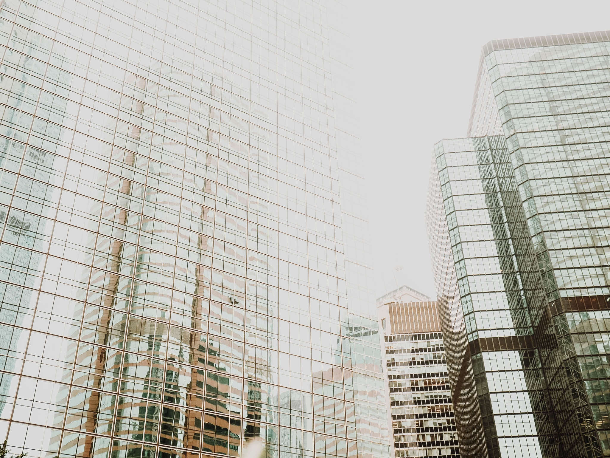 low angle photography of clear curtain glass buildings