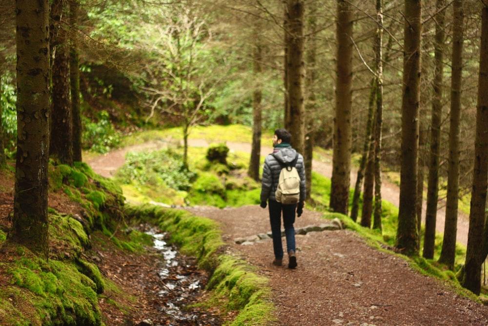 man hiking in between trees