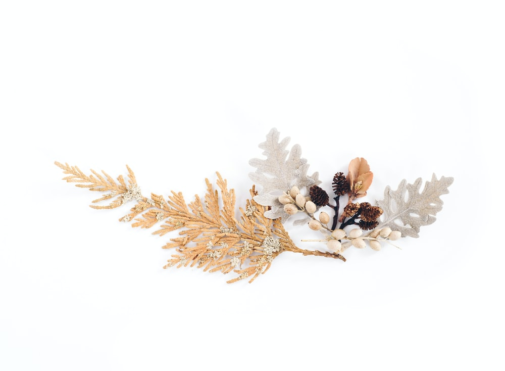 brown and gray leaves with white flower decor