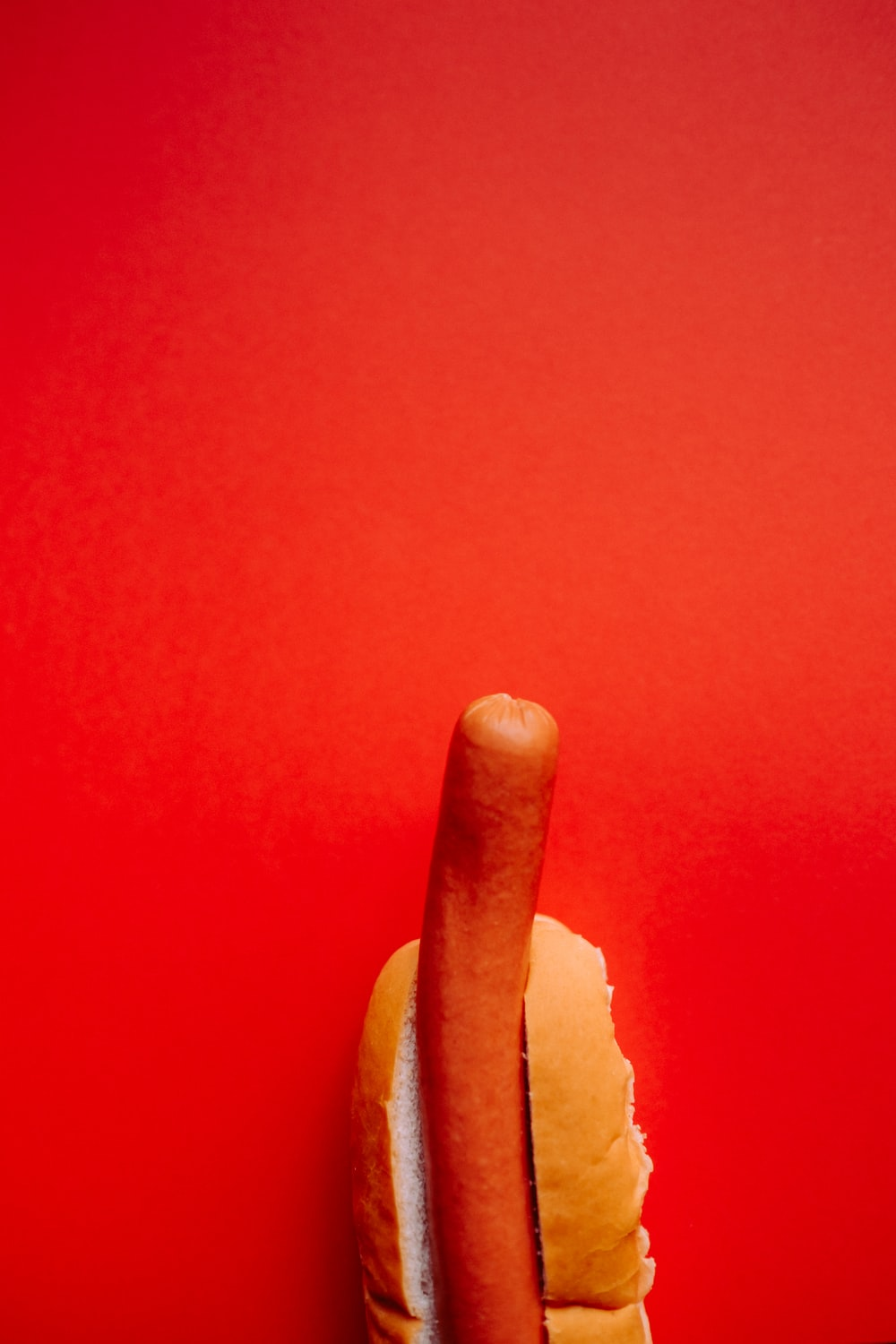 hotdog sandwich on red background
