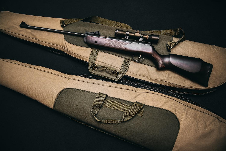 gun and gun bags