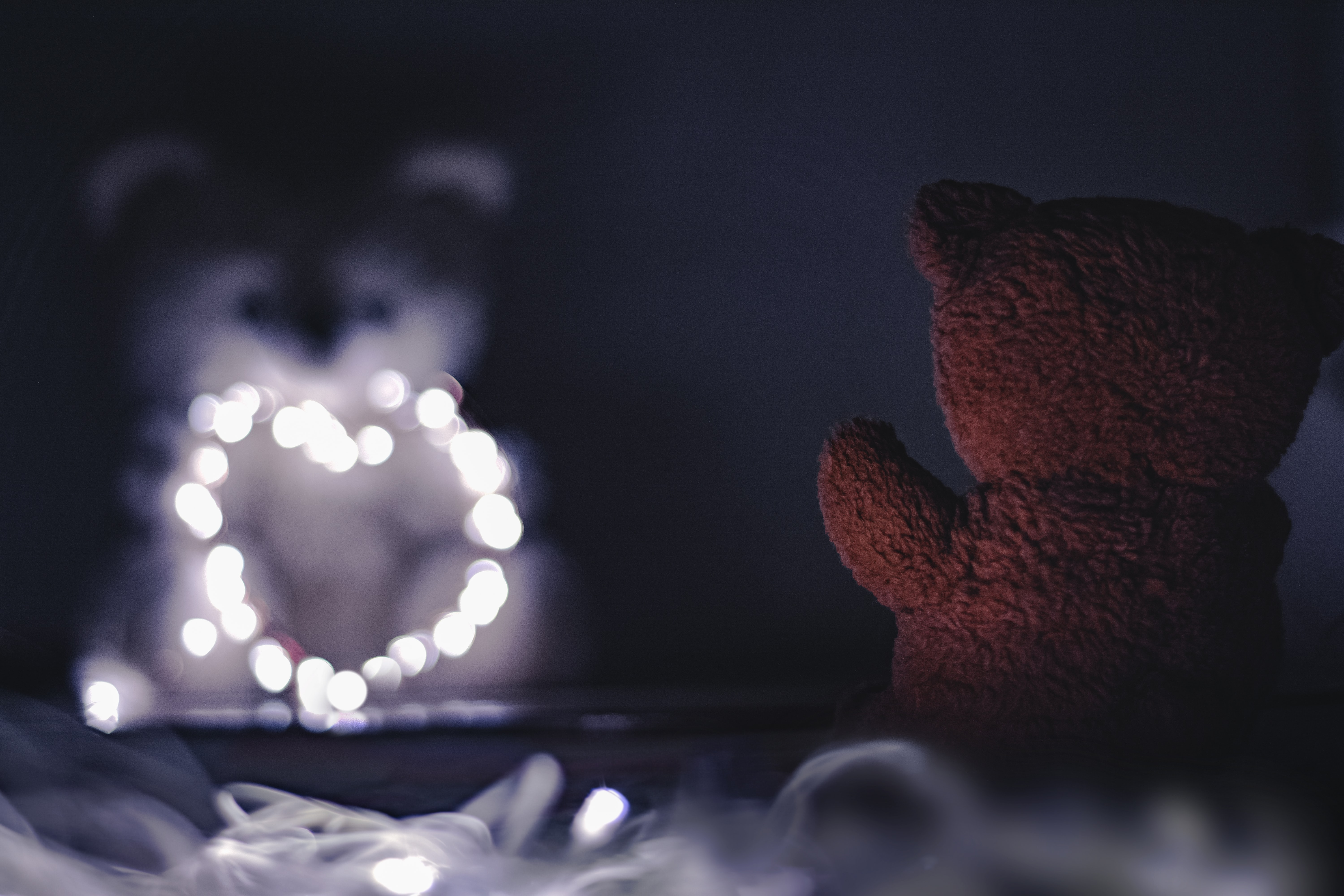 brown teddy bear bokeh photography