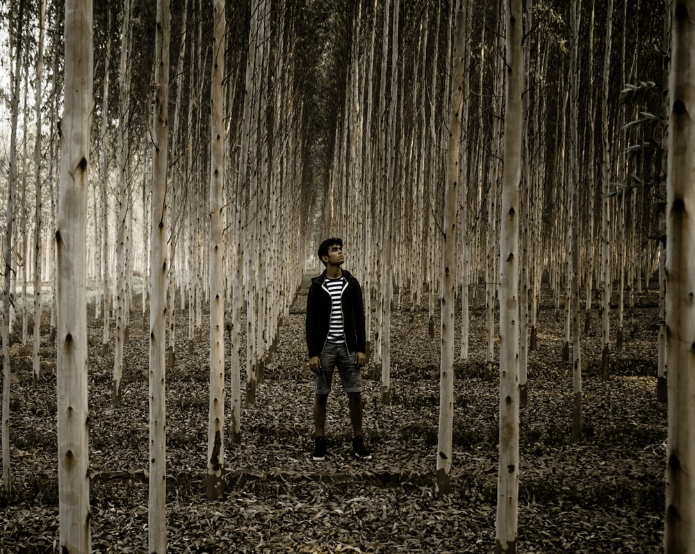 man standing in the woods